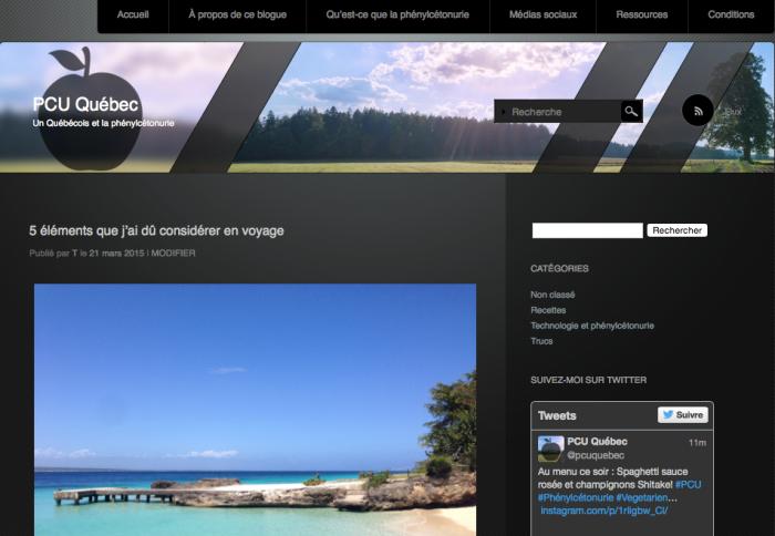 Capture d'écran - Blogue